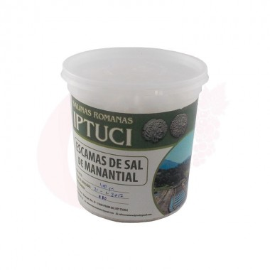Escamas de sal de Manantial Iptuci